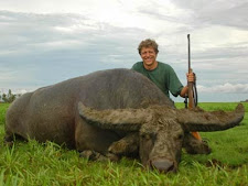 Fantastic big buffalo bull hunted by Henrik Thalbitzer from Denmark in the wet season. This massive bull taken at Carmor Plains has incredible mass all the way along the horns (as well as the mud!) and a wide spread of 50+ inches. A big bull like this is a trophy of a lifetime.