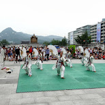sensu show in downtown Seoul in Seoul, Seoul Special City, South Korea