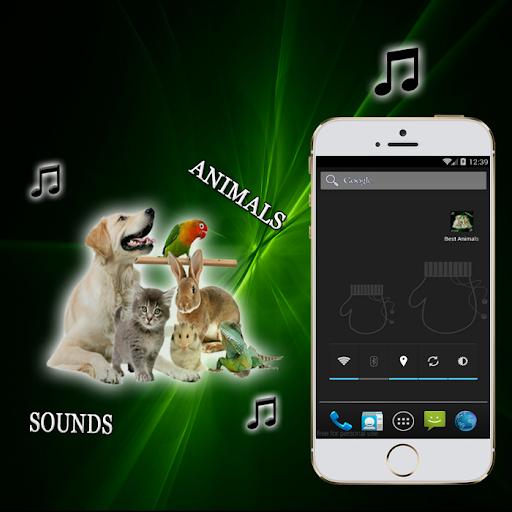 最高の動物の音