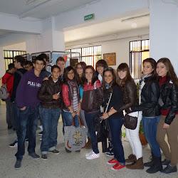 Proyecto Arce