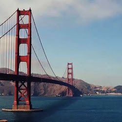 Tacoma Narrows Bridge's profile photo