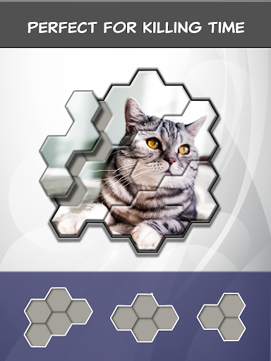 Jigsaw Hexa Block screenshot 15