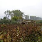 2012 11 octombrie 004.jpg