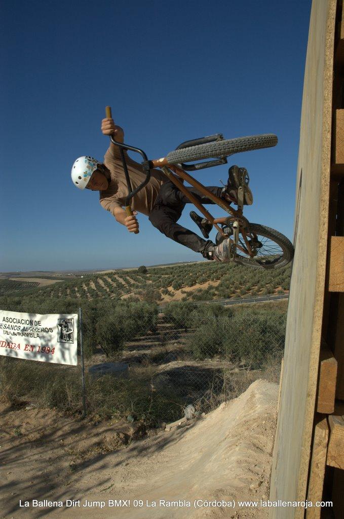 Ballena Dirt Jump BMX 2009 - BMX_09_0078.jpg