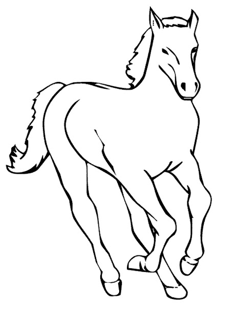 Cute Baby Horse Coloring Pages Only Coloring Pages In Cute Horse Coloring  Pages