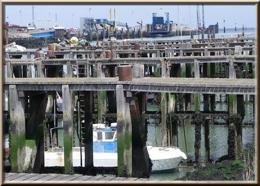 pontons marée basse