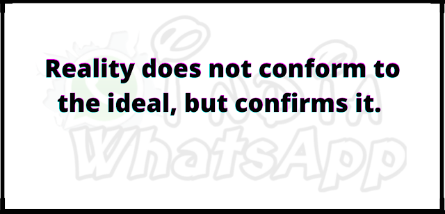 Reality does not conform to the ideal, but confirms it.