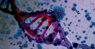 """معلومات """"صادمة"""" تكشف لأوّل مرّة: سلالة فيروس """"كورونا"""" المتحوّرة قد """"تكتسح"""" العالم"""