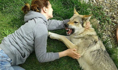 Kontrola zubů;)