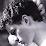xavier rb's profile photo