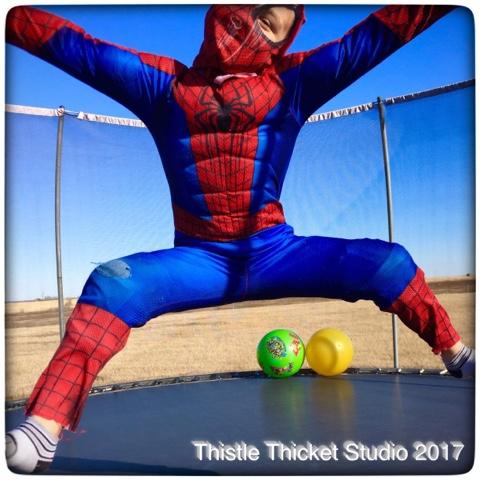 Thistle Thicket Studio, super heroes, spiderman