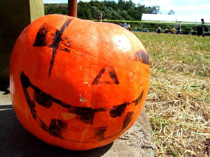 433 #ハロウィン #かぼちゃ #秋 #雑貨