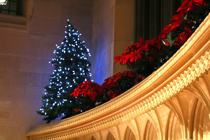 Christmas Tree at Knox Presbyterian, Ottawa