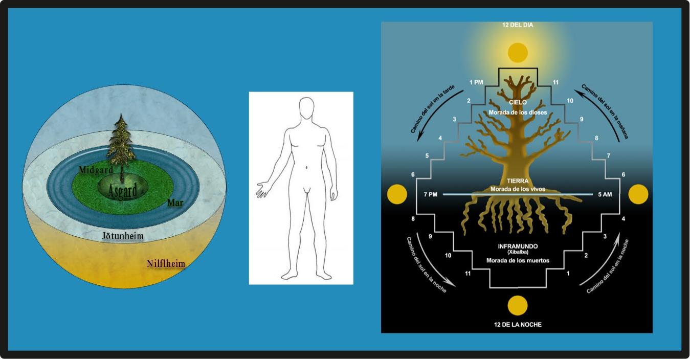 El Blog del Profano: El Significado de la Anatomía Humana