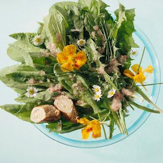 Kräutersalat mit Fleischröllchen