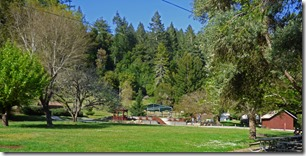 The Campground, Felton CA