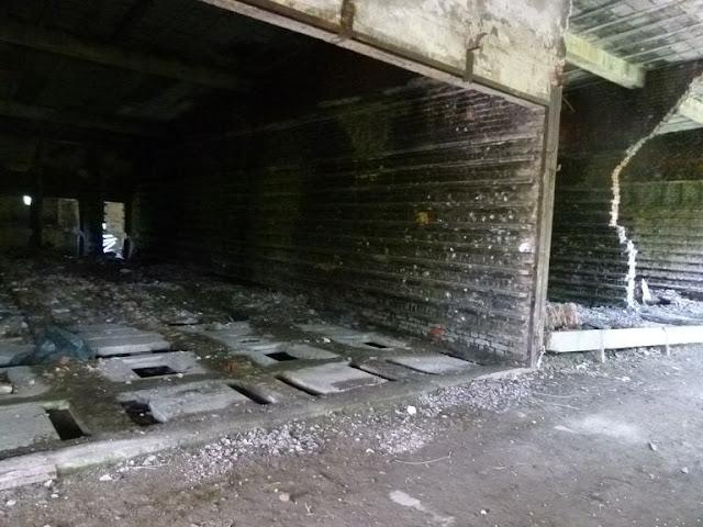 Obóz Ustrzyki 2015 - P1130905_1.JPG