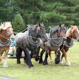 Paard & Erfgoed 2009