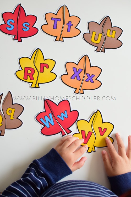 AUTUMN THEMED UPPERCASE - LOWERCASE LEAF PUZZLE