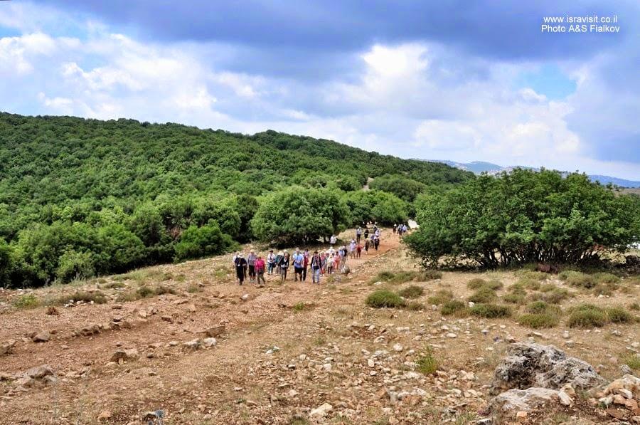 Пешеходный маршрут по горе Мирон. Швиль писга Мирон. Экскурсия по Верхней Галилее. Гид в Галилее Светлана Фиалкова.
