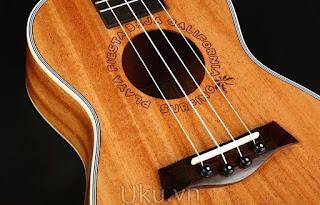 ukulele bws