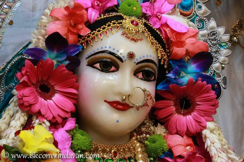 ISKCON Vrindavan Sringar Deity Darshan 25 Jan 2016 (17)