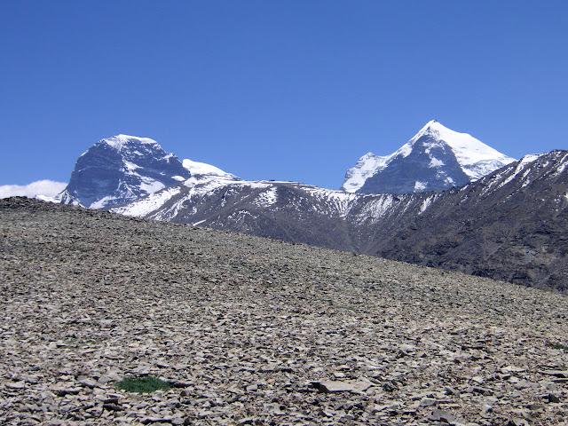 Au sud de Jawshangoz, 4400 m, Pamir méridional, Tadjikistan, 18 juillet 2007. Au premier plan, biotope de Parnassius jacquemontii, P. jacobsoni, Synchloe callidice, Baltia shawii, Colias marcopolo, Melitaea fergana. Au fond, les Monts Engels (6507 m) et Marx (6723 m). Photo : F. Michel