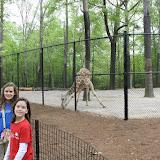Zoo Snooze 2015 - IMG_7250.JPG
