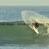 _DSC9460.thumb.jpg