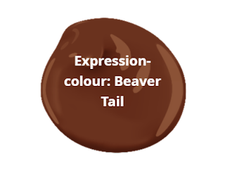 Buy Cottage Paint , IWindowshop.ca, colour Beaver Tail