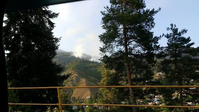Пожар в Боржомском ущелье