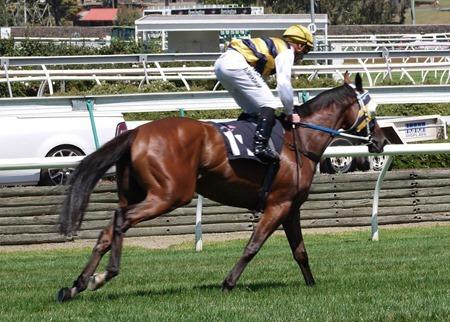 race 4_pemberley 1