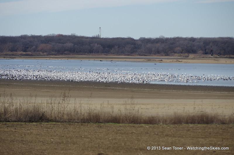 01-19-13 Hagerman Wildlife Preserve and Denison Dam - IMGP4065.JPG