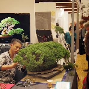 2012年 パリ 大宮盆栽デモンストレーターとして参加