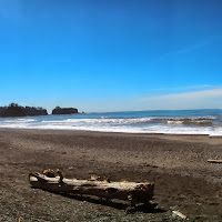 Rialto Beach May 2013 - IMG_20130504_133757_287.jpg