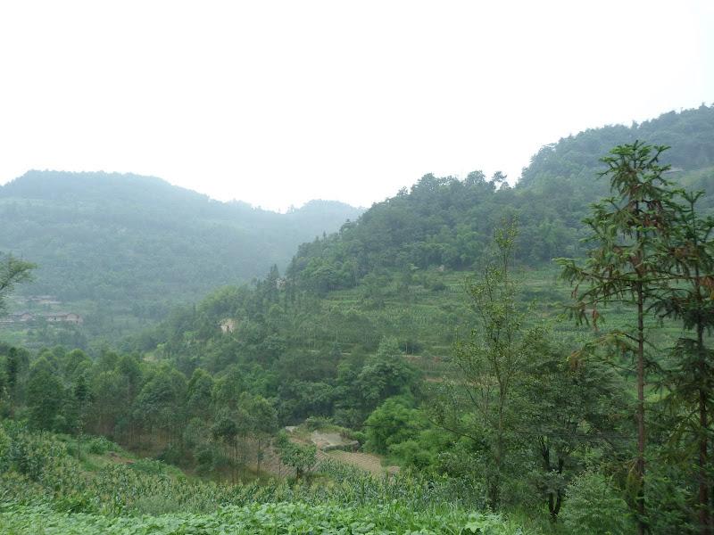 CHINE.SICHUAN.RETOUR A LESHAN - 1sichuan%2B1260.JPG
