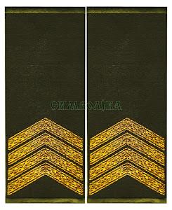 Погони-муфти ЗСУ Старший сержант повсякденні