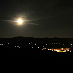 NocturnaMenejador