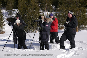 Photo: Our guests shooting pictures along the back of the Madison over, Yellowstone National Park, Wyoming
