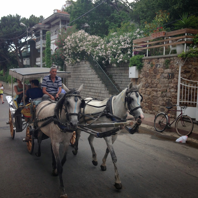 burgazada horse & carriage