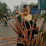 sitti aisyah's profile photo