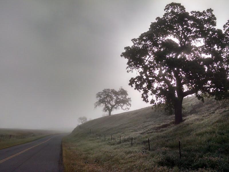 Life Ride • Santa Ynez Valley
