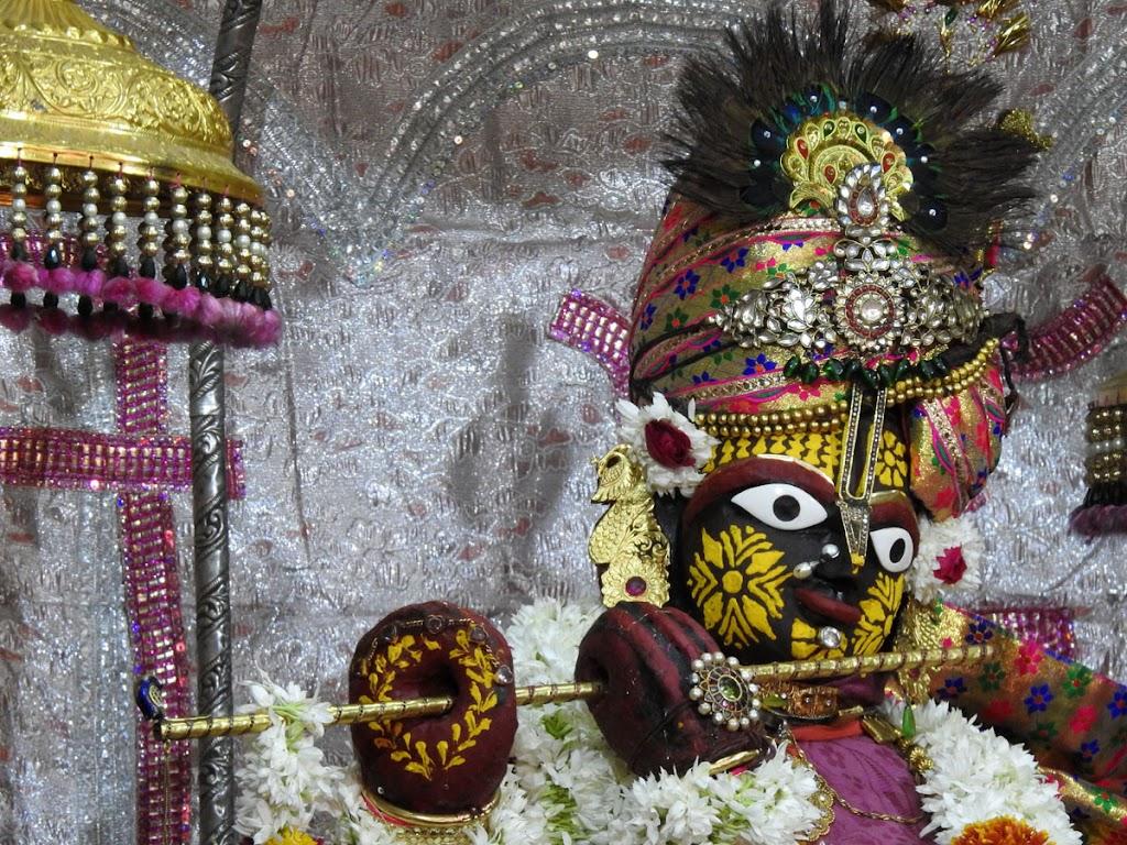 Radha Govind Devji Deity Darshan 10 Jan 2017 (10)