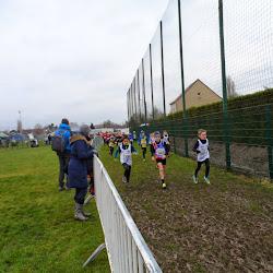 2015 01 18 - Veldloop te Schellebelle