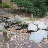 Каменный мостики через ручей.  Японский сад в Москве. Архитекторы Кен Накадзима, Такео Адачи