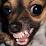 naKy's profile photo
