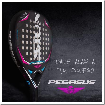 SIUX lanza Pegasus Lady, la pala de mayor potencia para jugadoras con perfil ofensivo.