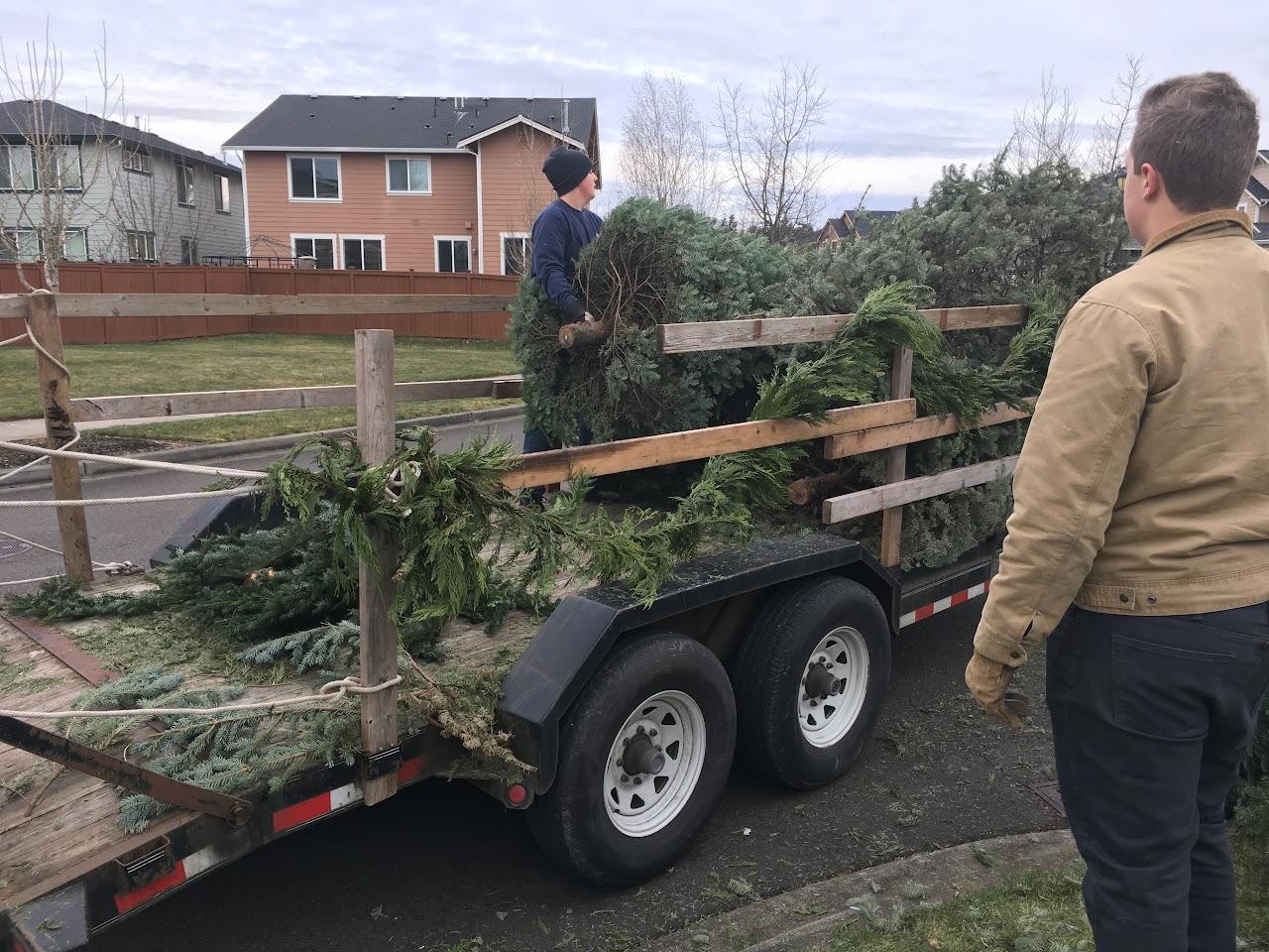 Christmas Tree Pickup - January 2017 - IMG_6999.JPG