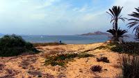 Parcela de 2000m2. Para chalet unifamiliar, tiene 36 metros de fachada en primera linea de playa, con vistas al Mar Menor. Ideal para construir la vivienda de tus sueños. En La Manga del Mar Menor, Cartagena, Murcia. Cerca de Todos los Servicios y la playa del Mar Menor. Precio: 600.000 € http://www.jortitza-marmenor.com/home/venta/terrenos/venta-terreno-la-manga-del-mar-menor-jmm