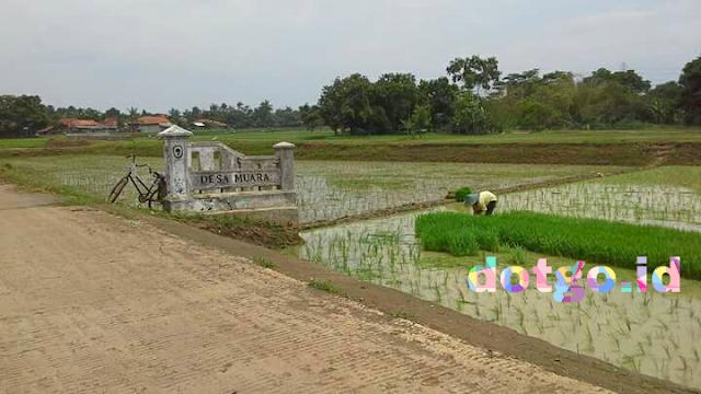 Agustusan di desa muara blanakan